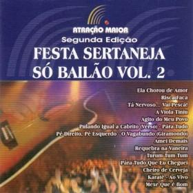 Festa Sertaneja - Só Bailão - Vol 2