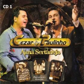 Alma Sertaneja - Vol. 1